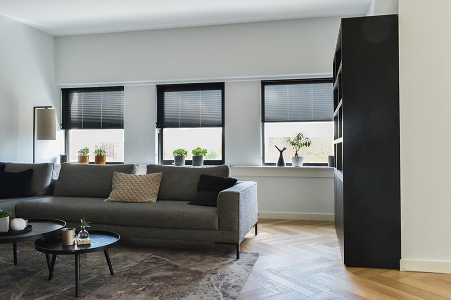 plisse gordijnen transparant woonkamer